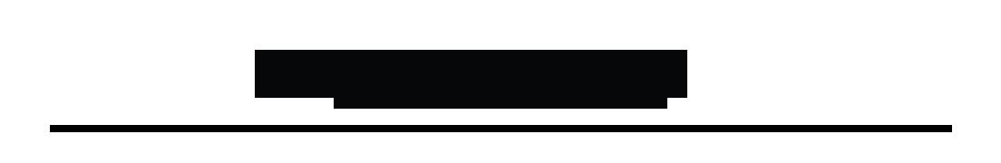 Banner de marca WESTERN DIGITAL