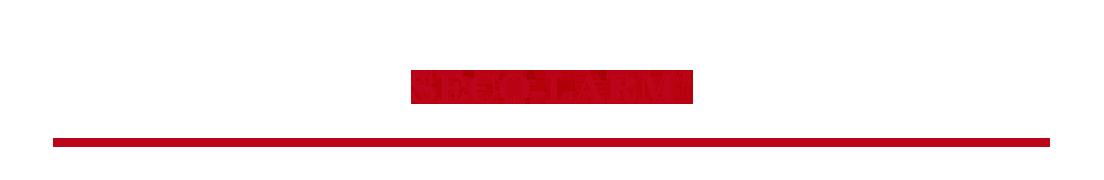 Banner de marca SECO-LARM